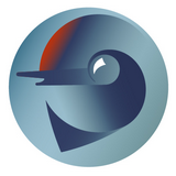 СШ Дельфин Логотип